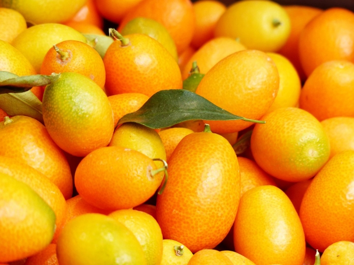 Red Mandarine Essential Oil Uses and Benefits